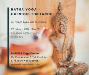 Práctica de Hatha yoga + cuencos tibetanos @ Dharma Yoga Center